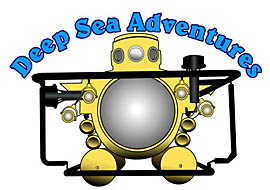Deep Sea Adventure  Logo Design 207-385-1661
